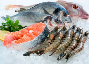 Higher Fish Consumption Lowers Risk of Depression