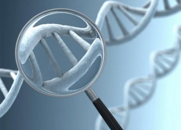 'Genome Editing' on Human Embryos in UK