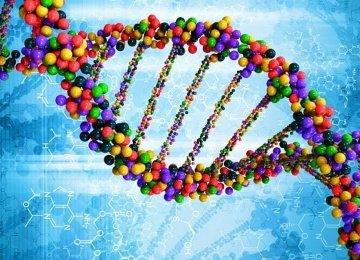 Screening for Genetic Diseases