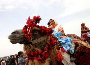 Festival of Nomads