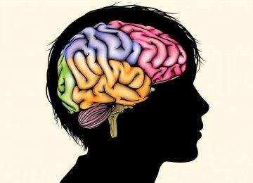 Poorer Children Develop 'Smaller Brains'