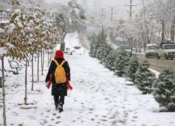 Snowfall  in Alborz  Province