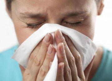 Swine Flu Under Control