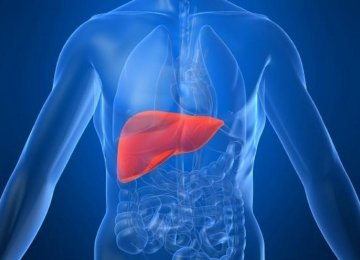 Keeping Liver Healthy