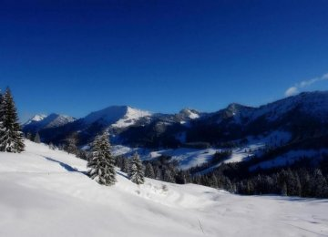 Climate Change May Alter Alps Tourism