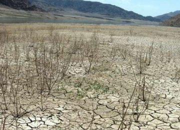 NDMO Urges DOE to Save Jazmourian Wetland
