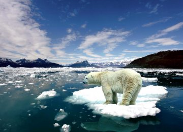 World Temperatures Up 1° Celsius