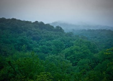 Paving Way for Ecotourism