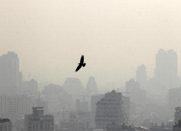 Skyscrapers, Factories Exacerbate Air Pollution