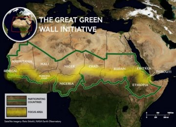 Pan-African Tree Wall to Combat Desertification
