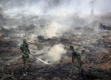 Indonesia Wildfires Cost More Than Tsunamis