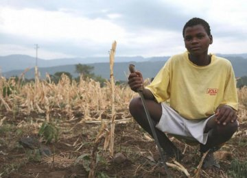 Ethiopia Faces Food Shortage