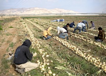 Israel Strangling  Palestinian Economy