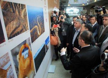 'Beautiful China' in Photo Display