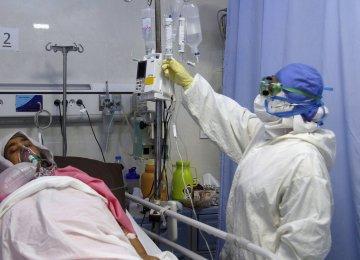 Daily Corona Deaths Soar Past 250