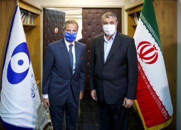 IAEA Chief: 'Positive' Technical Talks in Tehran Facilitate Future Cooperation