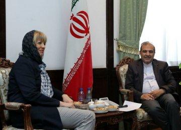 EU Diplomat Discusses Yemen in Tehran