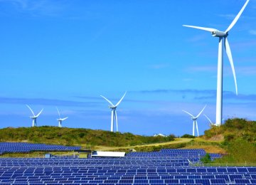 Worldwide Renewable Capacity Set for 50% Growth