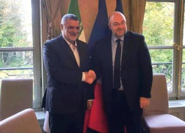 Iran's Agriculture Minister Mahmoud Hojjati (L) shakes hands with his French counterpart Stéphane Travert in Paris.