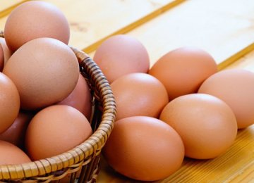 Iranian Egg Exporters Losing Out to Turkey