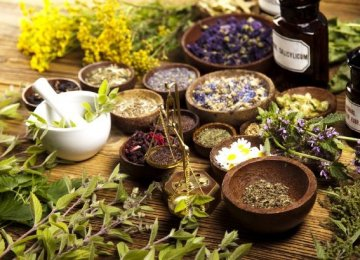Medicinal Plant Exports Exceed $500m