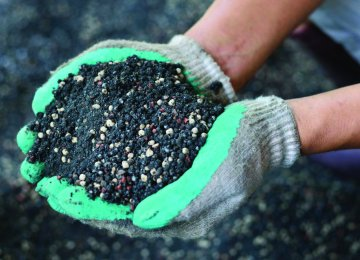 About 6 million tons of nitrogen fertilizers are produced in Iran every year.