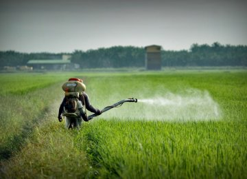 Genetic Engineering Can Help Curb Pesticide Use
