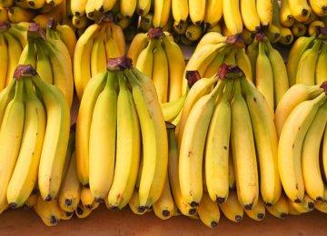 Bananas Vs. Oranges