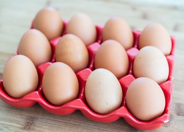 Egg Exports Slowly Resume as Bird Flu Contained