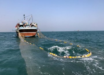 Caspian Fishing Season Starts
