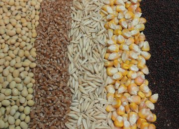 Import of Animal Feeds Down 13%
