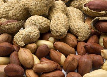 Peanut Imports