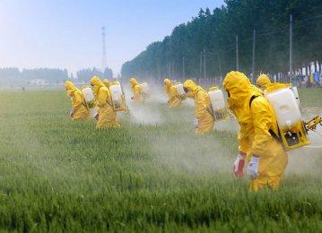 Iranian Pesticide Use Below Global Average