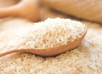 84% Rise in Rice Imports