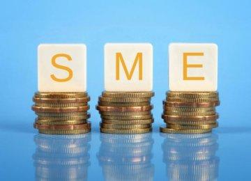 30% of VAT Revenues  for SMEs