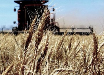A record high of 14 million tons of wheat were domestically produced last year.