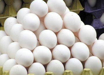 Egg Exports at 41K Tons Last Year