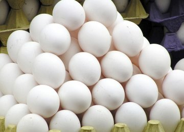 Egg Exports to Afghanistan Resume