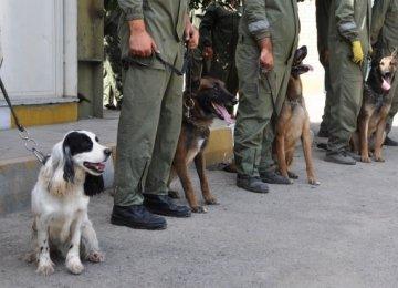 Iran Chosen as WCO's Regional Dog Training Center