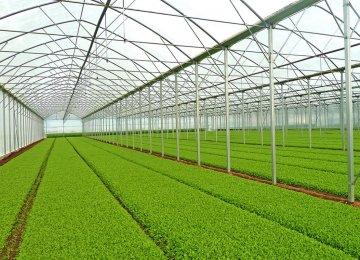 Greenhouse Development on Agenda