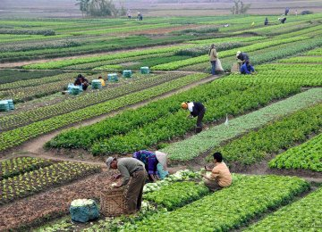 Economy Ministry Proposes Abolition of Agricultural Tax Exemption