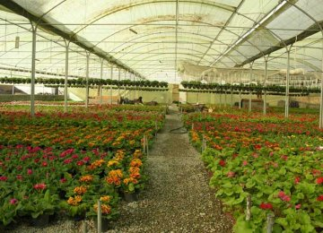 COVID-19 Inflicts Losses on Plant, Flower Producers