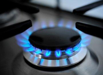GECF Chief Castigates High Gas Consumption