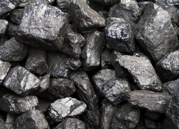 Rise in Coal Extraction, Concentrate Output