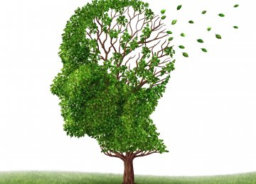NGOs Urged to Help With Alzheimer's