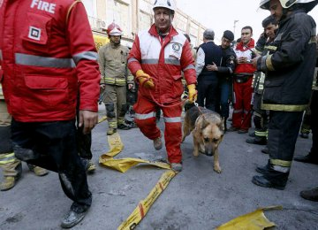 Sniffer Dogs Help Find Bodies in Collapsed Plasco Tower