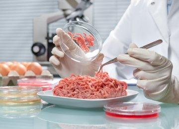 Food Safety Control