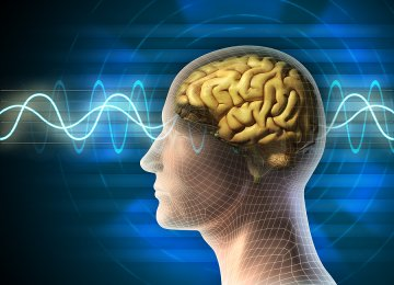 Electromagnetic waves can increase the risk of infertility, immune deficiency, and cancer.