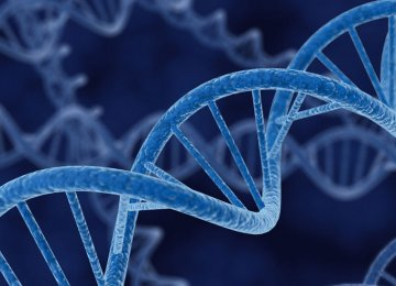 Researchers find a drop in some harmful genetic mutations in longer-lived people.