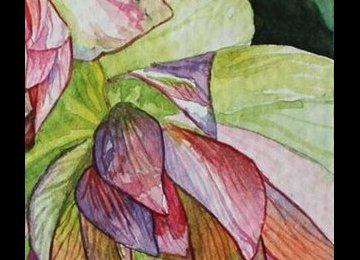 Spring in Watercolor